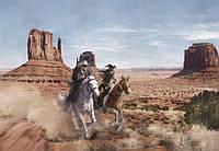 Фотообои фотошпалери Komar 8-473 Disney Lone Ranger Одинокий рейнджер 368х254 бумажные