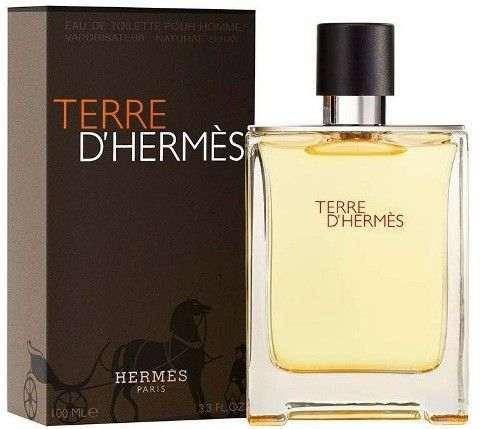 Мужской аромат HERMES TERRE D'HERMES 100 ML, фото 2