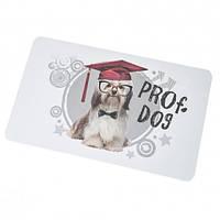 Доска для нарезки Профессор