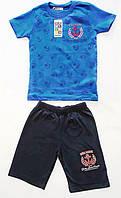 Трикотажный костюм на мальчика 3, 4, 5, 6, 7 лет (0884-1)