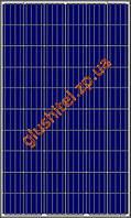 Солнечная панель Amerisolar AS-6P 330 W