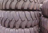 Спецшіна 17,5-25 Белшина Ф-120 нс20, фото 3