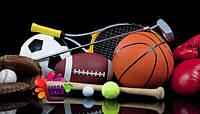 Мячи для командных игр и аксес...