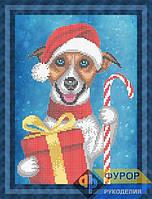 Набор для вышивки бисером - Собака в шапочке с подарком, Арт. ЖБч4-75