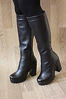 Зимние сапоги на каблуке из натуральной кожи №773
