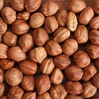 TPA DX Hazelnut Flavor (Лесной орех), 5 мл