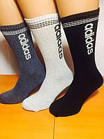 Носки мужские спортивные тенис «Adidas» 41-45р. Ассорти