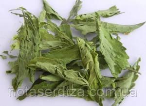 Стевия лист сухой