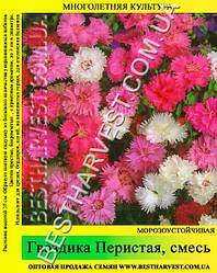 Семена Гвоздика «Перистая» смесь 50 г