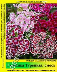 Семена Гвоздика «Турецкая» смесь 50 г