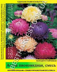 Семена Астра «Пионовидная» смесь 50 г