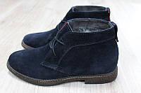 Мужские зимние ботинки Hilfiger синяя замша