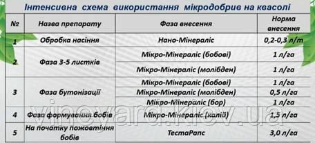 Подкормка фасоли, удобрения Минералис, фазы внесения препарата, Нано-Минералис (Янтарный), микроудобрения (бобовые, бор), ТестаРапс