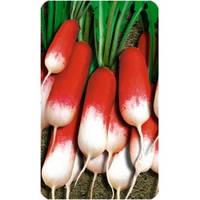 Семена редиса 18 Дней (500г) GSN