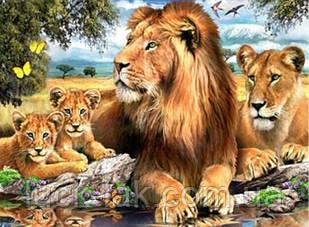 Алмазная вышивка семья львов на отдыхе 40х30 см, частичная выкладка НА ПОДРАМНИКЕ 33х24 см