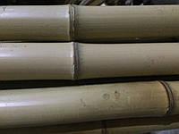 Бамбуковый ствол, д.4-6см, L 4м, декоративный