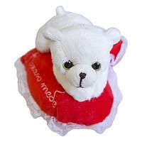 Мягкая игрушка Медвежонок Кроха на сердце Кохаю тебе