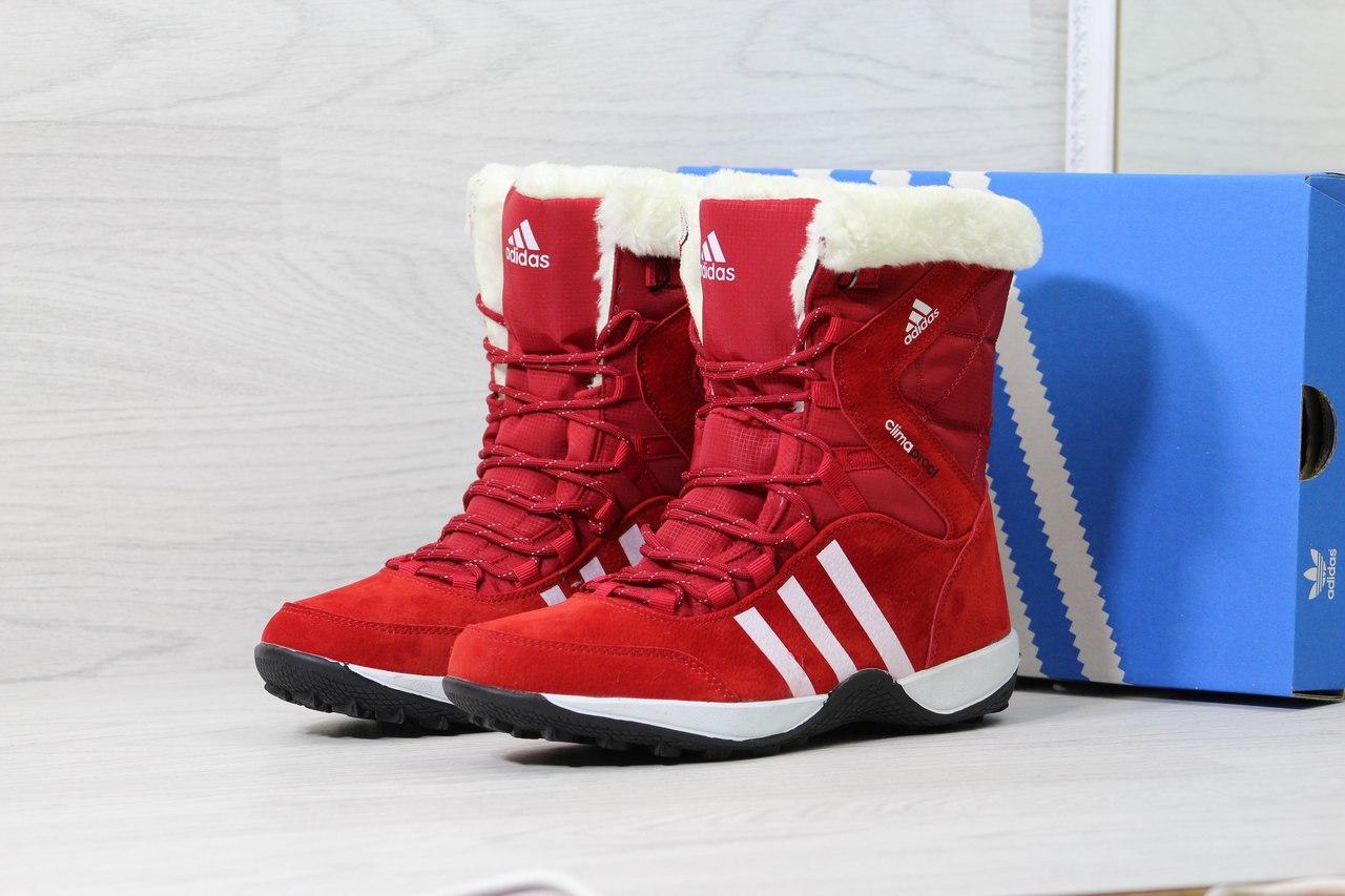 Ботинки   Adidas Climaproof женские зимние (красные), ТОП-реплика