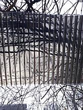 Сотовый поликарбонат 4мм бронза BORREX (Боррекс)