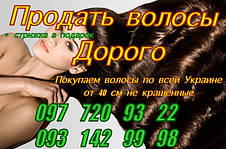 Продать волосы в Павлограде Ежедневная скупка волос от 40 см