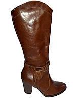 Кожаные сапоги женские демисезонные на каблуке Kordel 4597