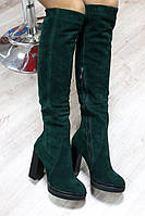 Зимние натуральные замшевые сапоги ботфорты на каблук