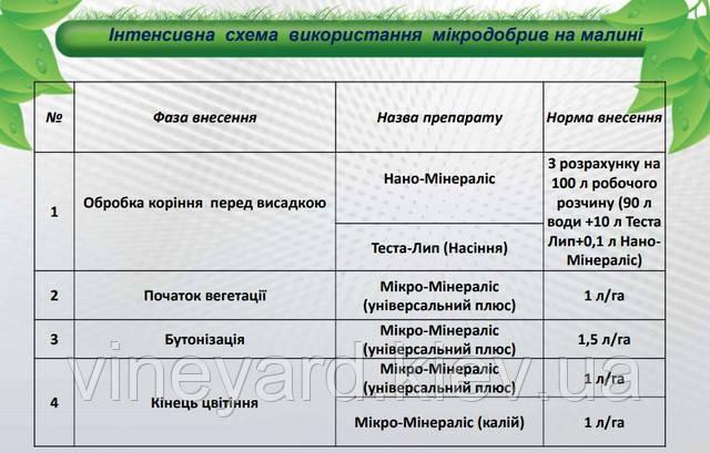 Микро-Минералис (Универсальный плюс, Калий), обработка корней Теста-Лип, Нано-Минералис, производитель Минералис Украина, удобрения, нормы внесения, внекорневая подкормка
