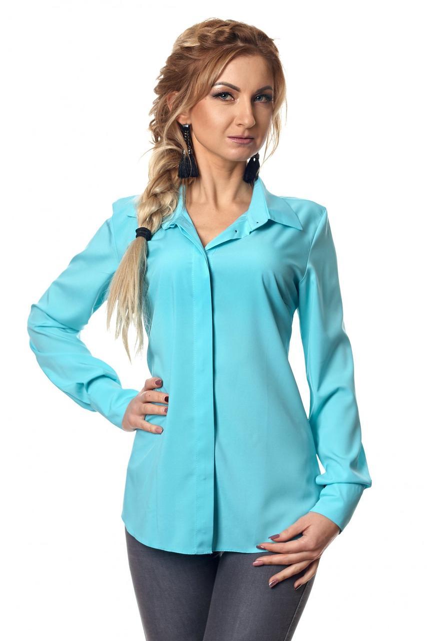 Яркая красивая модная деловая женская блузка