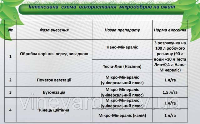Украинский производитель, подкормка ежевики, нормы внесения, фаза внесения, Микро-Минералис (Калий, Универсальный плюс), Нано-Минералис, Теста-Лип (семена)