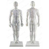 Муляж тела человека 50 см мужчина, фото 1