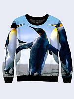 Женский свитшот Пингвины