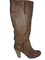 Сапоги женские кожаные на каблуке Vizzavi 8526 демисезонные
