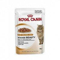 Royal Canin Intense Beauty (85 г.) желе
