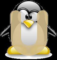 Установка и конфигурация популярных дистрибутивов GNU, Linux