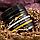 Pearl Wax лавандовый воск для депиляции, фото 3