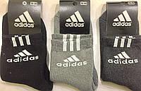 """Носки мужские спортивные зимние """"Adidas"""" 36-40 размер, Ассорти"""