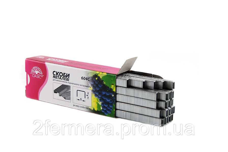 604C Скобы для степлера Н919 (в упаковке 4800шт)