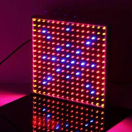 14w красный синий оранжевый цвет 3 LED завода светать теплиц завод рассады лампы, фото 2