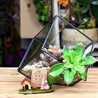 DIY микро пейзаж куб парниковых стекла сочные растения цветочный горшок