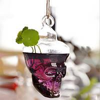 Гидропонных установках сад цветочный горшок форма черепа висит стеклянная ваза
