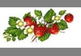 Кастрюля эмалированная цилиндрическая (1 л) Epos Земляника, арт. 1607/2К