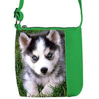 Зеленая детская сумка для девочки с принтом Хаски