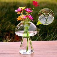 Форма гриба гидропонных установках цветок стекло ваза домашнего декора
