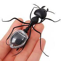 Обучающее Солнечно-мощное муравье Энергосберегающая модель Игрушка для детей Обучение Насекомые игрушки подарок