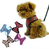 Прекрасный регулируемой мягкой клетчатой сетки щенок проводов воздушной сетки собака упряжь