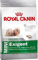 Royal Canin (Роял Канин) MINI EXIGENT корм для привередливых собак мелких пород 2 кг