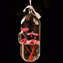 Гидропоника растений форма цветка таблетки висит стеклянной вазе домашнего декора, фото 2