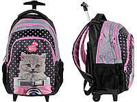 Рюкзак школьный на колесах PASO с котом PEX-997
