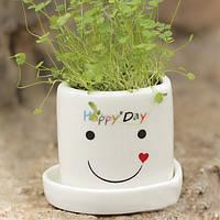 Сделай сам мини-счастливый ангел горшке завод траве любителей настольного декора