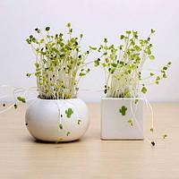 DIY мини керамический кактус трава растение в горшке столе офисного декора